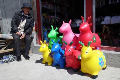 チベットの人気者?